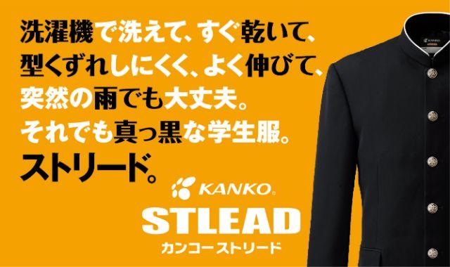 STLEAD_banner _2.jpg